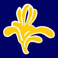 drapeau-Bruxelles.png
